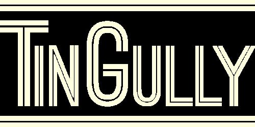 TinGully
